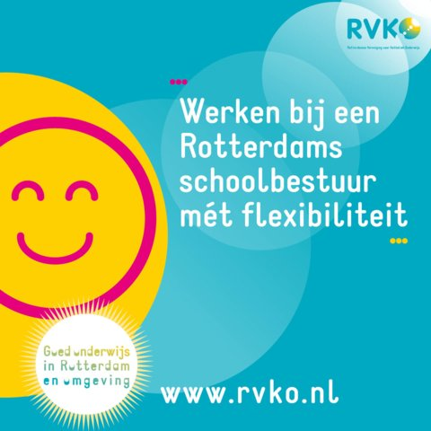 banner RVKO flex website